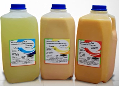 pasteurized liquid eggs