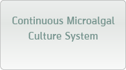 Continuous Microalgal Culture System