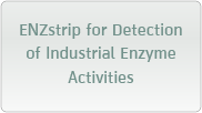 ENZstrip for Detection of Industrial Enzyme Activities